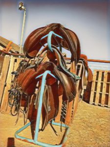 Saddles on saddle rack