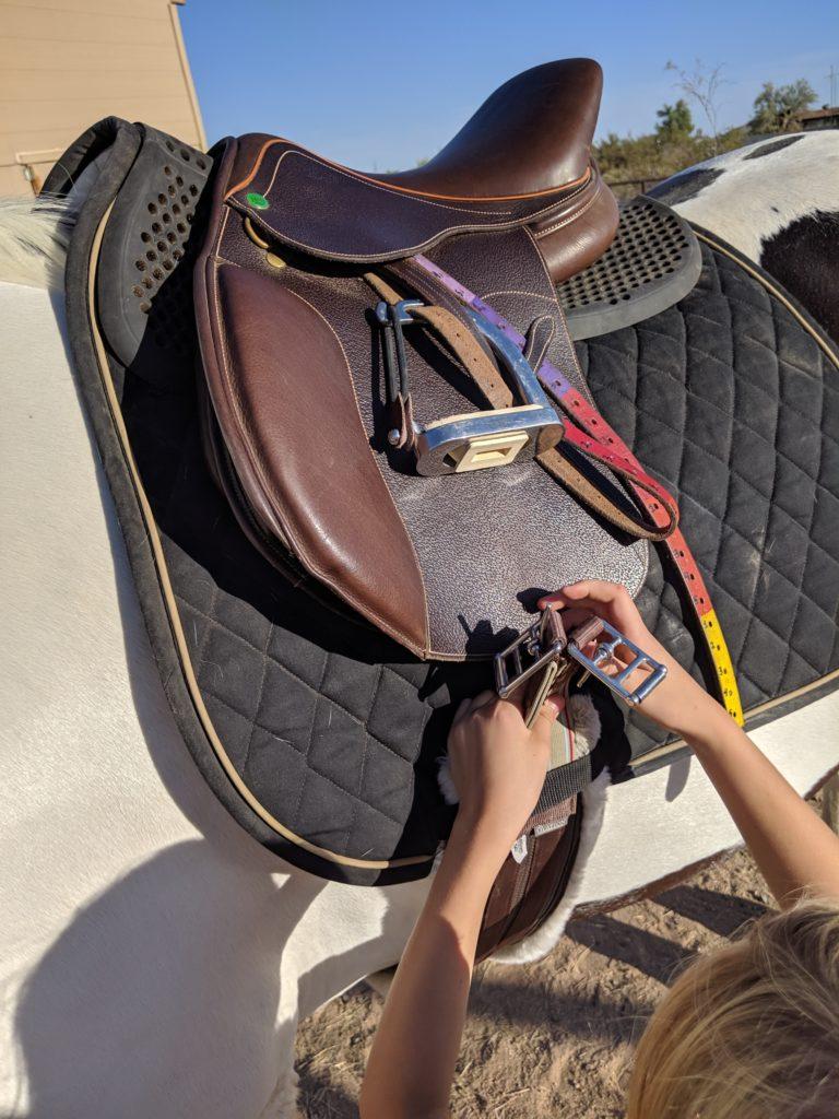 Student putting girth through keeper on saddle pad