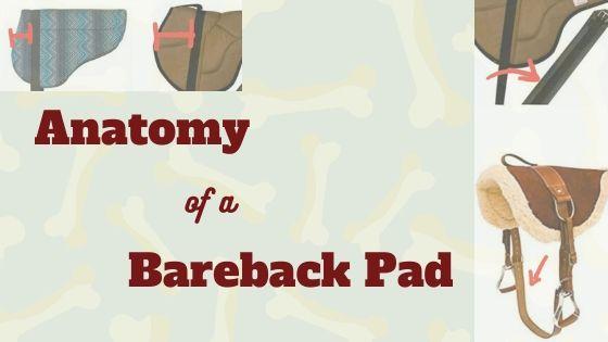 Anatomy of a Bareback Pad