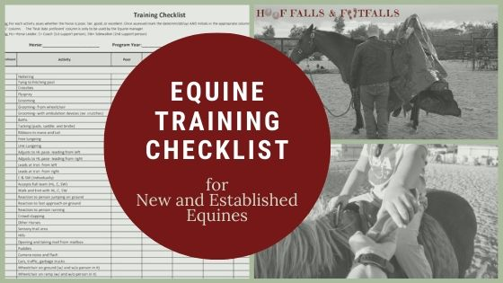 Training Checklist for New and Established Equines!