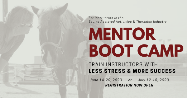 Mentor Boot Camp Event Cover